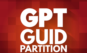 fix the selected GPT formatted disk partition