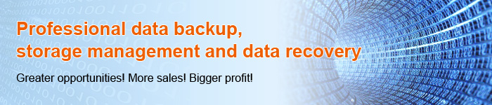 Professional data backup, storage management and data recovery