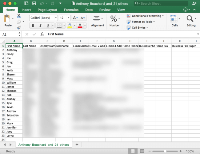 Open Excel file on your PC that contains iPhone contacts.