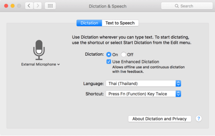 apple dictation