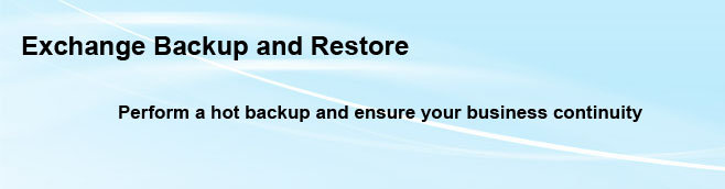 Exchange Backup and Restore Technologies